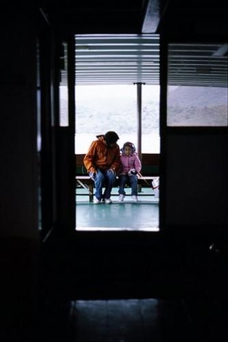 By {link:http:/www.flickr.com/photos/eert/3826725089/}Tree{/lnik}