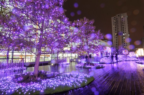 by Tree Chow (光圈:f/10 快門:13秒 ISO:100)
