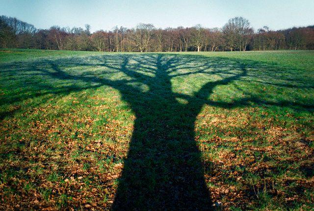 Photo by {link:http://www.flickr.com/photos/zest-pk/923930667/}Zest-pk {/link}