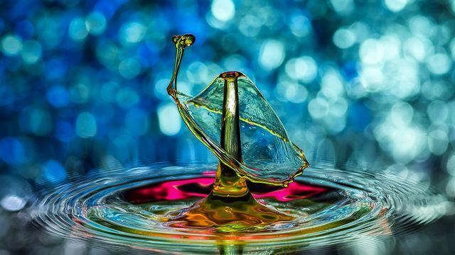 水之艺术 Liquid Art!利用高速摄影拍摄漂亮水滴-IT资源库为您分享