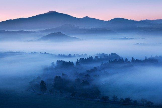 Лес закат