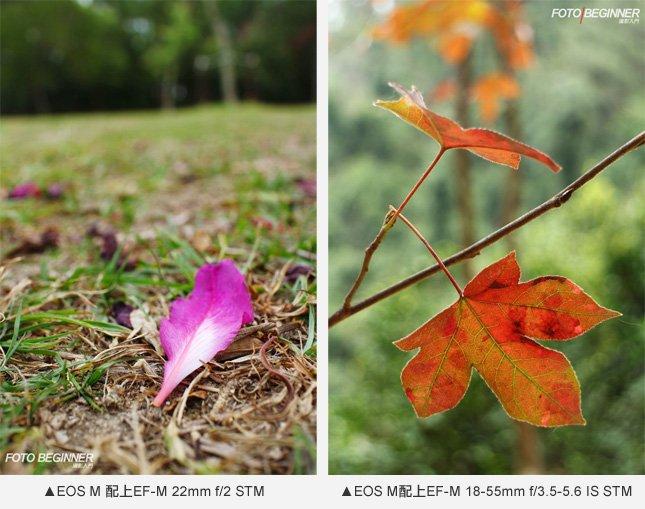 EOS M配備1800萬像素APS-C CMOS影像感應器,配上兩支原廠鏡頭已能輕易做出淺景深效果,所拍影像顏色也很特出。