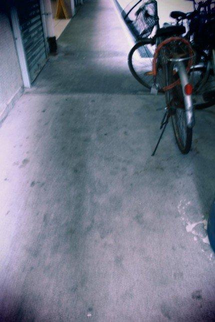 IMG_9910