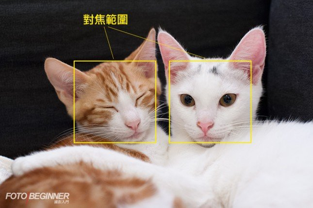當主體是在相同距離,對焦在那一邊也是一樣的。