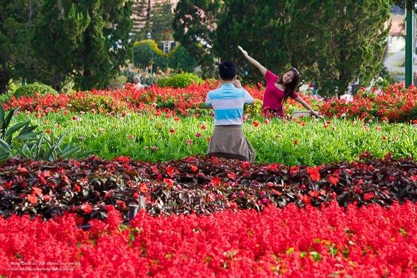 這張相片是於越南拍攝的,若果沒有了這兩個遊客,相片便缺少「趣味點」了!