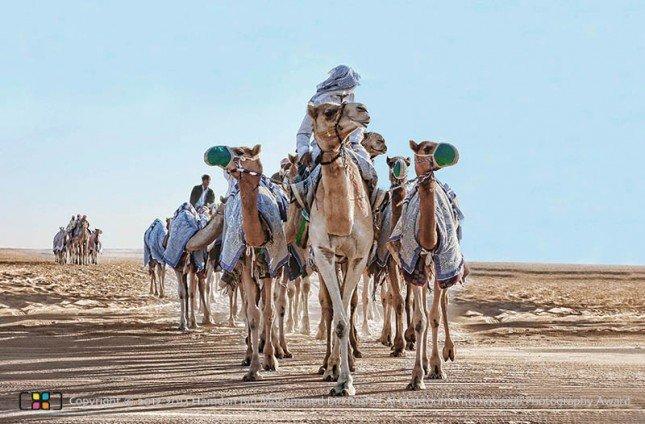 Mansour Al Manaei - United Arab Emirates