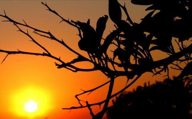 若果太陽是陪襯,可以把它放在一旁。(Photo by  Ozgurmulazimoglu)