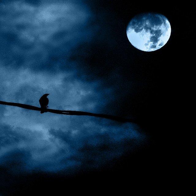 月亮當然是夜景不可缺少的題材,但留意要找尋合適的前景,相片才會拍得漂亮。 Photo by {link:https://www.flickr.com/photos/luchilu/677786684}Luz Adriana Villa{/link}
