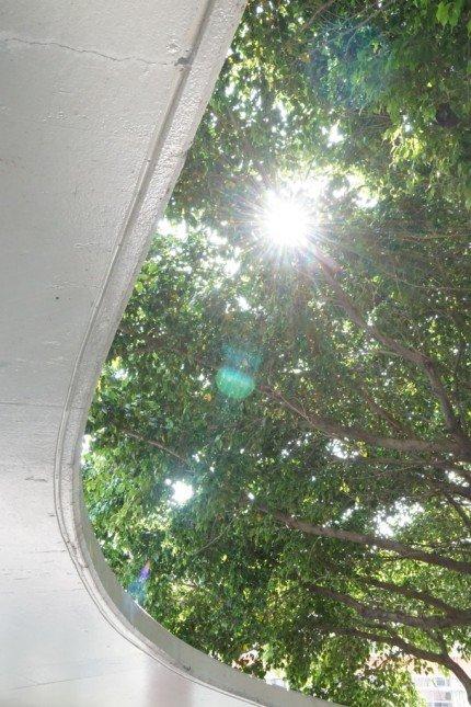 即便是背光的情況,光位和暗位也平衡得恰到好處。 (f/16 ISO2500 1/60s +1EV)