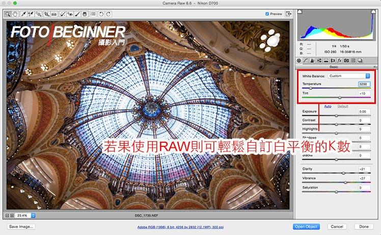 使用免費的 Adobe RAW Editor