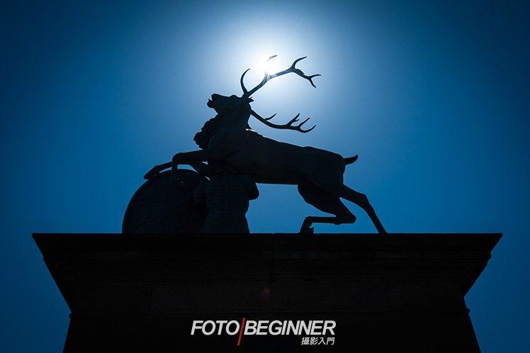 在大逆光的環境下拍攝,使用矩陣測光可以拍出剪影。