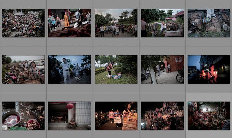 圖片故事組 - Photo Essay
