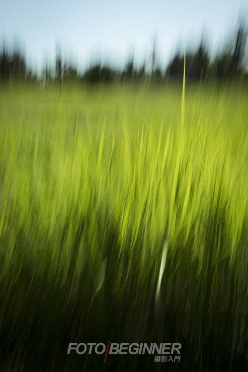 在稻田利用慢快門拍出有趣的抽象效果,我們也說笑不論是那個地方也可以拍上半小時以上~