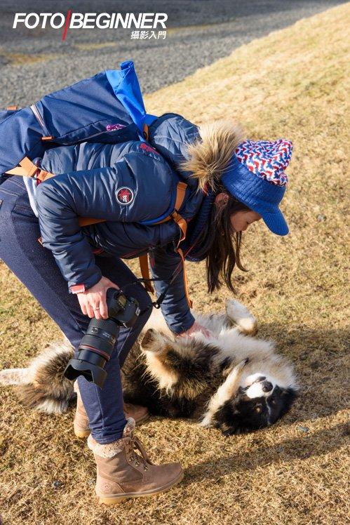 有冰島馬又怎可以少了「冰島狗」呢?看同學跟熱情的狗狗玩得多開心~